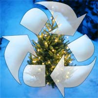 xmas tree recycling gwinnett